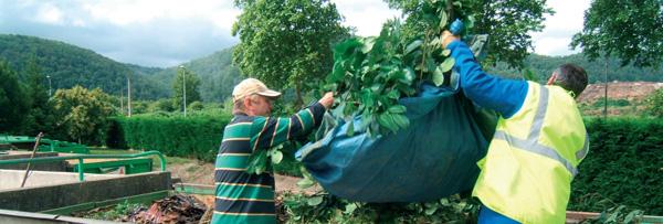compostage-dechets-verts